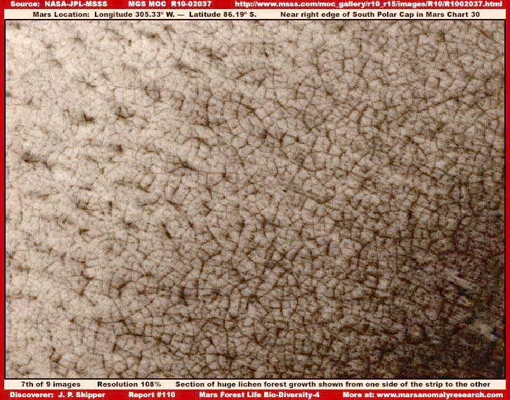 Bőrtünetek - A cukorbetegség első jelei lehetnek