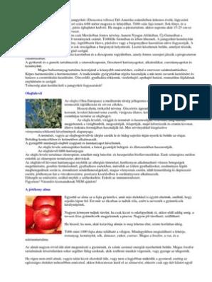 réti legyezőfű ( filipendula ulmaria )