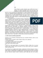 Hetkoznapi csodak - [PDF Document]